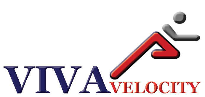 Viva-Velocity
